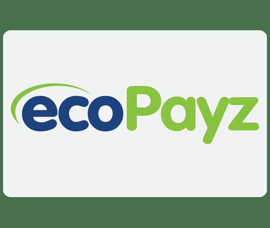 Kasino Online EcoPayz