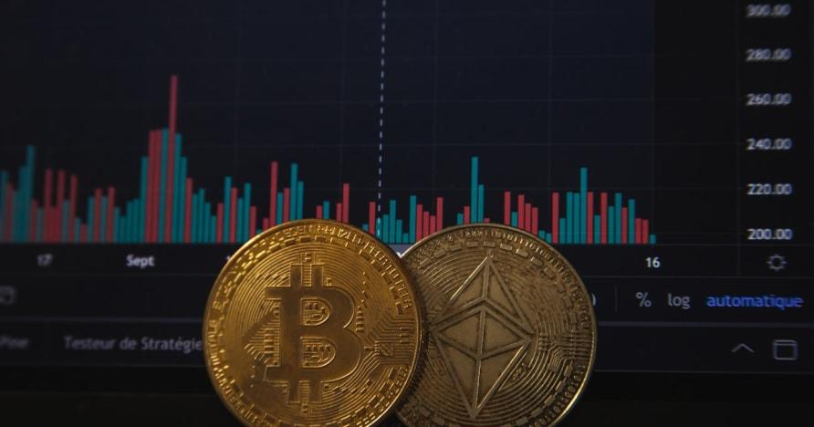Perjudian Bitcoin Meningkat Setelah Pengumuman PayPal Terbaru